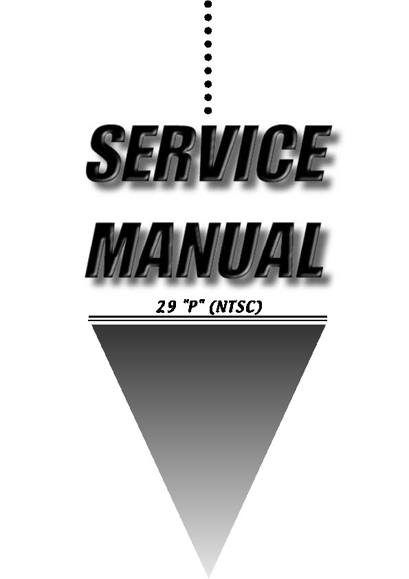 Service Manual_29 Slim TV.pdf